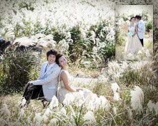 Korean_Wedding_Photos_Outdoor-91